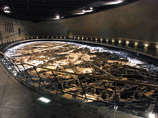 地底の森ミュージアム(仙台市富沢遺跡保存館)